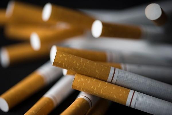 Tabac moins de cigarettes vendues en france en 2016 - Acheter des graines de tabac en france ...